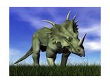 Styracosaurus Dinosaur Walking in the Grass Prints