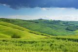 Asciano, Crete Senesi, Siena Province, Tuscany, Italy Photographic Print by Frank Krahmer