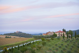 Farmhouses, Orchard, and Fields in Tuscany, Italy Photographic Print by John & Lisa Merrill