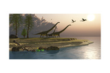 Mamenchisaurus Dinosaurs Walk to a Lake for a Morning Drink Prints