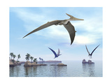 Three Pteranodons Flying over Landscape with Hills, Palm Trees and Water Posters