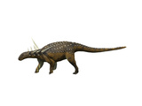 Sauropelta Dinosaur Posters