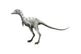 Ceratonykus Dinosaur Prints