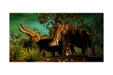 Platybelodon Was a Large Herbivorous Mammal That Lived During the Miocene Epoch Poster
