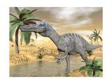 Suchomimus Dinosaur Walking in the Water in Desert Landscape Prints