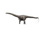 Diplodocus Dinosaur Prints