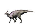 Tsintaosaurus Dinosaur Prints