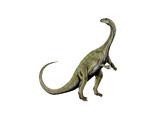 Massospondylus Dinosaur Print