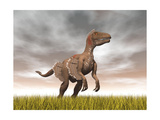 Velociraptor Dinosaur Standing in the Yellow Grass Posters