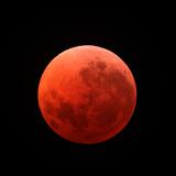 Lunar Eclipse Taken on April 15, 2014 Photographic Print