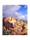 The Exposed Bones of a Triceratops on a Western Landscape Posters
