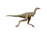 Linhenykus Dinosaur Art