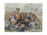 Smilodon Dirk-Toothed Cats Attacking a Glossotherium Art