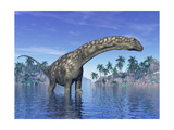 Argentinosaurus Dinosaur Grazing in a Tropical Climate Prints