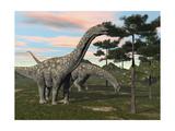 Argentinosaurus Dinosaur Grazing on Treetops Posters
