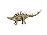 Kentrosaurus Dinosaur Print