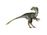 Guanlong Dinosaur Prints