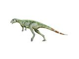 Pisanosaurus Dinosaur Poster