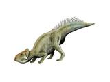 Leptoceratops Dinosaur Posters