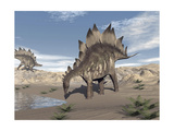 Stegosaurus Dinosaur Drinking Water in the Desert Stampe