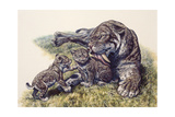 Smilodon Sabertooth Mother and Her Cubs Posters