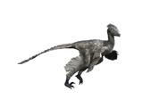 Troodon Dinosaur Poster