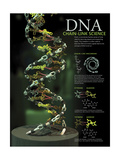 3D Poster Illustration of Dna Components Functionally Compared to a Chain Link Posters