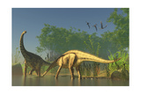 Spinophorosaurus Dinosaurs Grazing the Inhabited Swamps of the Jurassic Period Poster