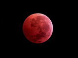 Total Lunar Eclipse Taken on December 10, 2011 Photographic Print