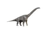 Giraffatitan Dinosaur Poster