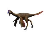 Oviraptor Dinosaur Poster