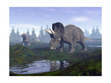Two Nedoceratops Dinosaurs Walking to Water Puddle in the Morning Light Posters