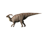Parasaurolophus Dinosaur Prints