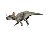 Centrosaurus Dinosaur Prints