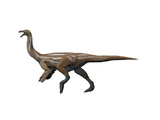 Gallimimus Dinosaur Art