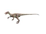 Ornitholestes Dinosaur Posters