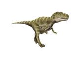 Gorgosaurus Dinosaur Print
