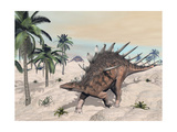 Kentrosaurus Dinosaurs Walking in the Desert Among Palm Trees Prints