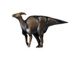 Charonosaurus Dinosaur Art