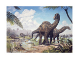 Large Dicraeosaurus Sauropods from the Late Cretaceous of Africa. Prints
