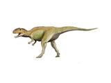 Giganotosaurus Dinosaur Posters