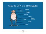 Adé l'chicon - Cours de Ch'ti Posters por Sylvain Bichicchi