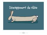 Heula. Développement du râble Poster by Sylvain Bichicchi