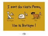 Oc'h oc'h. - Les chats Porons Posters por Sylvain Bichicchi