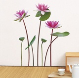 Lotus And White Water Lily Wall Decal