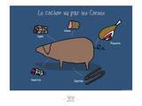 Broutch - Cochon vu par les Corses Prints by Sylvain Bichicchi