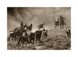 The Wild Bunch Giclee Print by Barry Hart