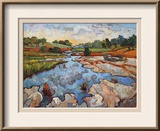 Hill Country Waters Framed Giclee Print by Erin Hanson