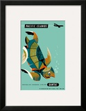 Pacific Islands - Qantas Airways - Green Sea Turtle Prints by Harry Rogers