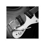 Classic Guitar Detail V Giclee Print by Richard James
